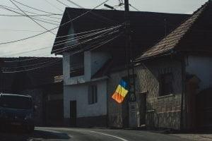 Libearty Bears Transylvania 34